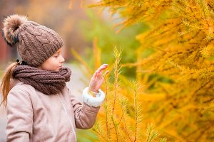 Portrait of beautiful girl background yellow leaf in fall