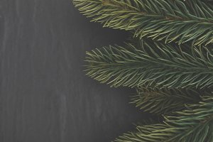 Christmas tree branches on slate