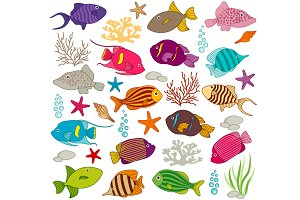 Colourful Fish Set