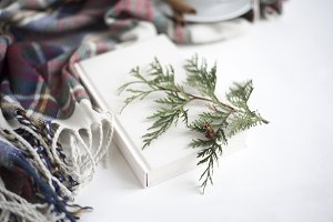 Holiday Styled Image with Plaid