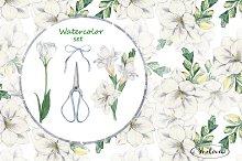 Set a florist. Watercolor
