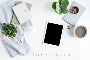 Ipad Mockup Succulent, Neutral