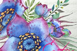 Exotica - Floral Watercolor ClipArt