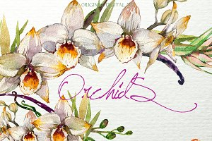 Orchids Invitation Clipart F-33