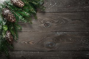Christmas decorations fir tree branch