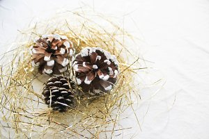 Pine cones and tinsel!