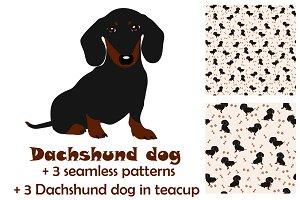 Dachshund + seamless pattern+bonus