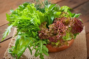 Variety fresh organic herbs