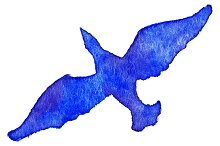 Watercolor blue bird vector isolated