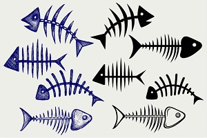 Fish bone SVG