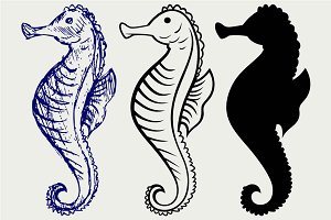 Cartoon Seahorse SVG
