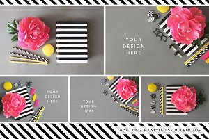 Styled Stock Photography Pack 26