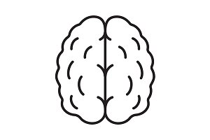 Human brain linear icon. Vector