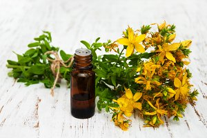 Tutsan flowers and natural oil