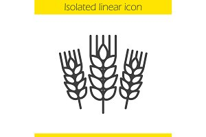 Wheat ears linear icon. Vector