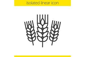 Wheat ears linear icon. Vector