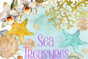 Sea Treasures 2 Watercolor Clipart