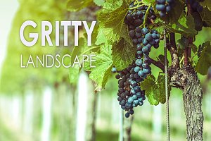 11 Gritty Landscape Presets