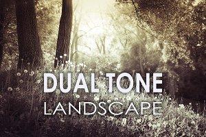 25 Dual Tone Landscape Presets