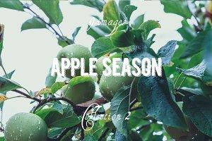 Apple Season Photoset Coll. 2