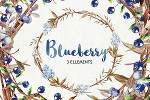Blueberry watercolor clipart