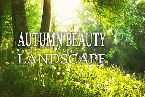 10 Autumn Beauty Landscape Presets