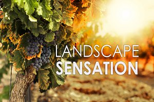 14 Landscape Sensation Presets
