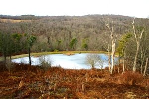 Frozen Lake in Countryside