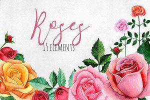 Watercolor roses flowers clip art
