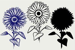 Beautiful sunflower SVG