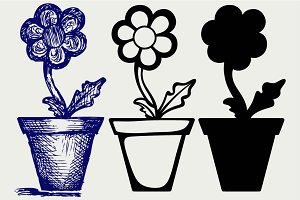 Daisies in pots SVG