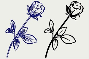 Rose flower SVG