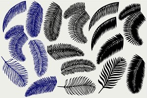 Palm leaves SVG