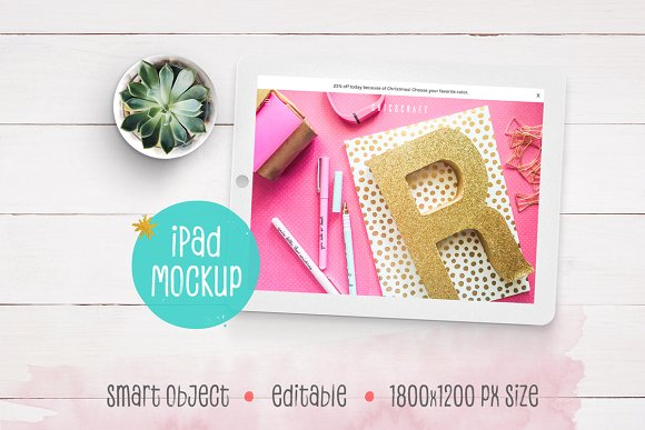 Download iPad™ Mockup with Succulent