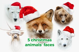 5 christmas animals on white