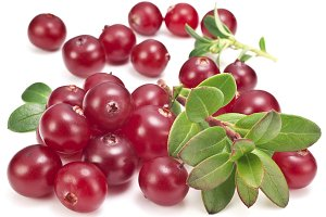 Cranberries with leaves on a white background. Image with maximum sharpness.