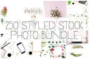 250 Styled Stock Photo Bundle
