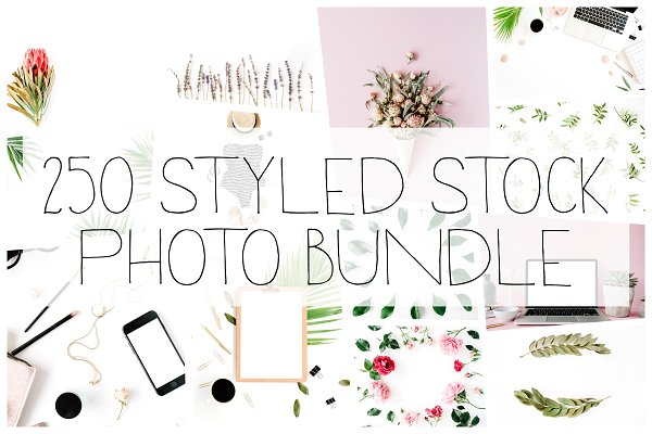 250 Styled Stock Photo Bundle