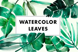 Watercolor tropical jungle leaves
