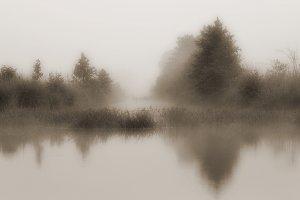 Landscape with morning mist