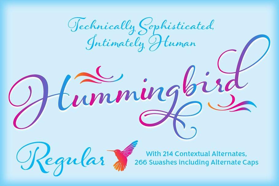 Hummingbird - Regular ~ Script Fonts ~ Creative Market