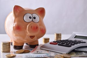 Savings and accounting front view