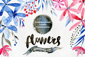 Watercolor flowers: blue, red, brown