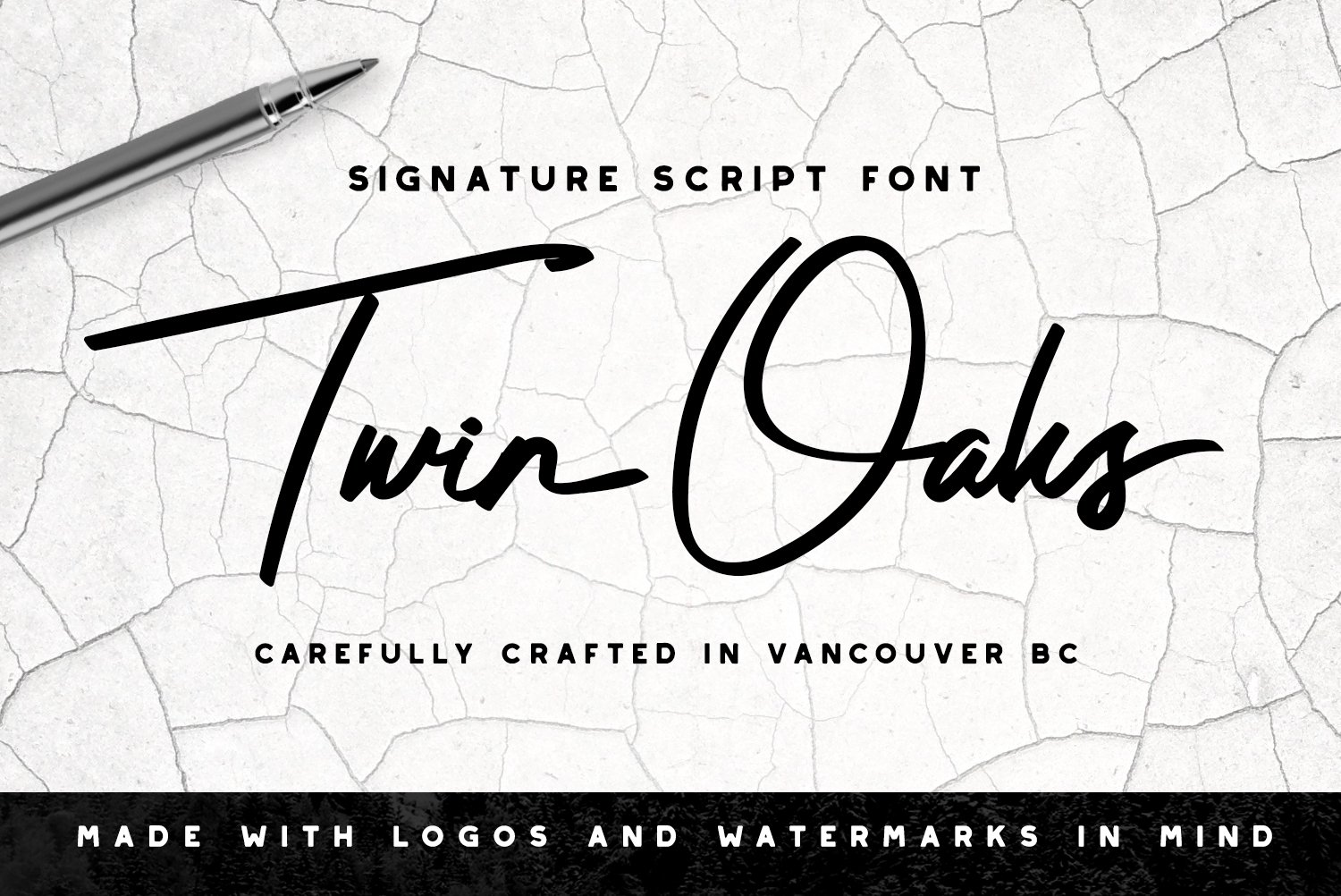 Twin Oaks Signature Script ~ Script Fonts ~ Creative Market