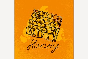 Beehive and Honey
