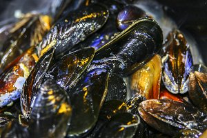 Close up of mussels