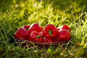 Peppers on the grass