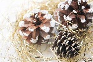 Festive pine cones
