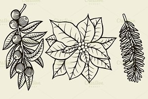 Vector set with Christmas plants.