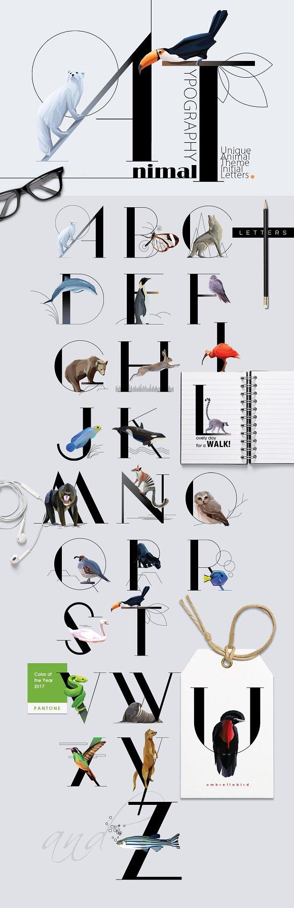 Animal Typography Symbol Fonts Creative Market